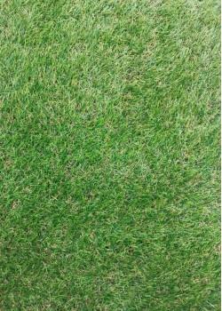 Искусственная трава Premium Soft 20 мм